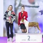 Nitra_SOBOTA_26-01-2019 - 010