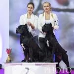 Nitra_SOBOTA_26-01-2019 - 016