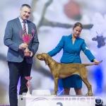 Nitra_SOBOTA_26-01-2019 - 065